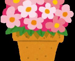 植木鉢のオハナ